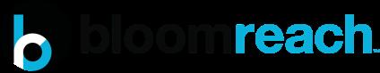 bloomreach-logo@2x.c0af89cb